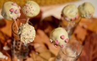 Vegane Schoko-Kastanien-Haselnuss-Cake Pops