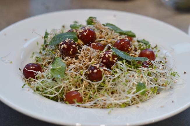 Alfalfa Sprossen Salat